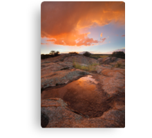 Puddle Up Canvas Print