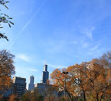 Sears Tower Chicago by Adam Kuehl