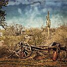 Old Wagon by Lucinda Walter