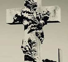 The Cross by Amped