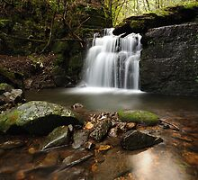 Strickland Falls by Stephen Gregory