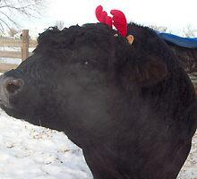 Jobie the Red Antlered Reindeer by JobieMom