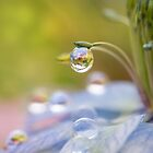 Impressions in a droplet by AnnaKirsten