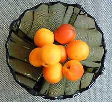 Apricots in a glass dish by bubblehex08