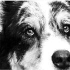 My Best Friends Eyes by BluePromises