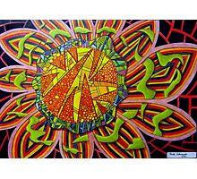 367 - FRAGMENTED FLORAL FANTASY - DAVE EDWARDS - COLOURED PENCILS - 2012 Photographic Print