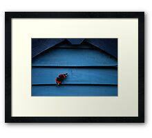 Butterfly & Blue Framed Print
