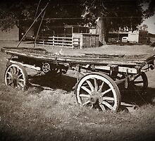 The old cart by swcphotography