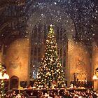 Hogwarts at Christmas by Serdd