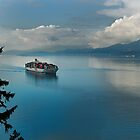 Container Ship Entering Vancouver Harbour by Yukondick
