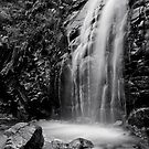 Waterfall Gully by Ryan Carter