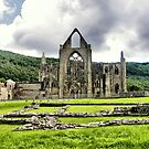 Tintern Abbey by Karen Martin