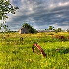 Abandoned Kansas Farm by Timothy Denehy