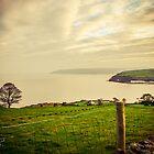 Ireland by Timothy Denehy