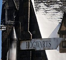 Hogsmead Sign by Serdd