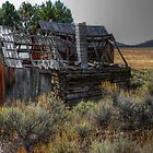 As Time Moves On by Charles &amp; Patricia   Harkins ~ Picture Oregon