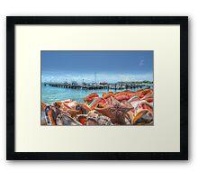 Marina at Montagu Beach in Nassau, The Bahamas Framed Print