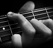 The Classical Guitarist by Robyn Carter