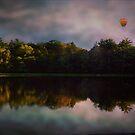 Balloon Ride by Judi Taylor