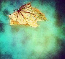 Floating Autumn by KBritt