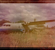 old plane by paul mcgreal