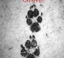 Pawsome Christmas! by Sally J Hunter
