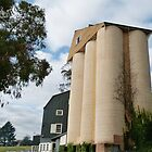 Ritchies Mill &amp; Silos by DEB CAMERON