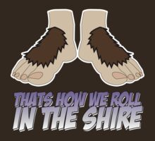 The Big Bang Theory - The Hobbit Thats How we roll in the Shire by metacortex