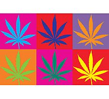Marijuana Photographic Print
