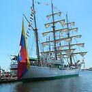 Tall Ships by Darlene Bayne