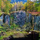 autumnal quarry by paul mcgreevy