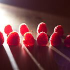 Dramatic Raspberries by Abby Thompson