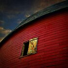 Old Round Barn by debidabble