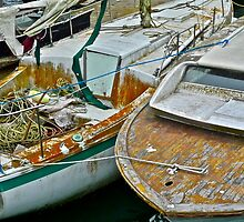 Seaworn & Neglected by Scott Johnson