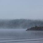 Foggy Morning Fishing  #8 by gypsykatz