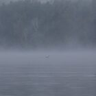 Foggy Morning Fishing  #11 by gypsykatz