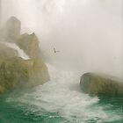 The Bird - Niagara Falls Ontario by Angela Churchill
