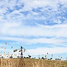 The Windmill at Lauriston Reservoir, 2012 by Liza Clements