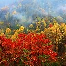 AUTUMN MAGIC by Chuck Wickham