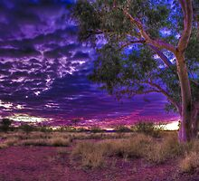 Finke River Sunrise by Dean Cunningham