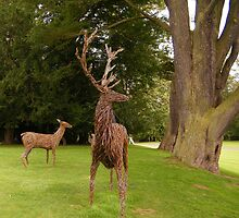 Deer sculptures at Scone by ElsT