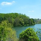 Overlooking The Lake by Darlene Bayne