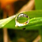 A Drop For YOU Dedicated to My Love, My Husband~ by Pbratt79