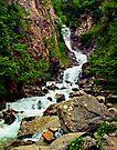 Reid Falls in Skagway by Yukondick