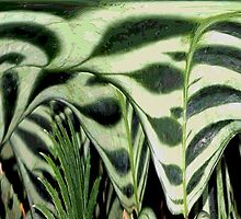 Abstract Greenery by aprilann