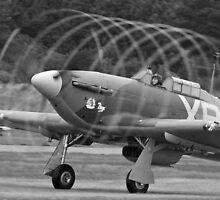 Vortex - Shoreham Airshow 2010 by Colin J Williams Photography