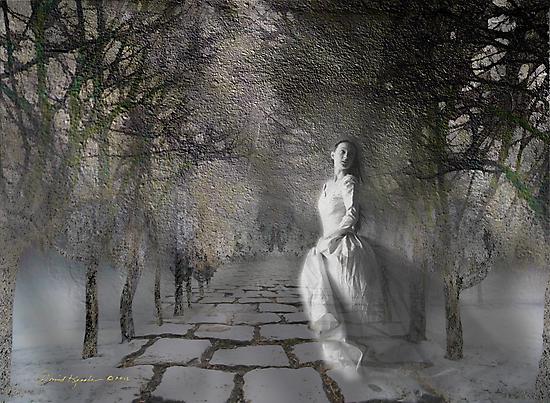 lonely ladies by David Kessler
