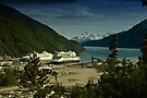 Skagway Harbour and Lynn Canal by Yukondick