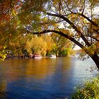 Fall Time Along the River by Lucinda Walter