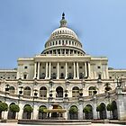 United States Capitol. by Lee d'Entremont
